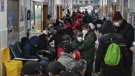 Menlu Sebut China Siap Fasilitasi Evakuasi WNI dari Wuhan