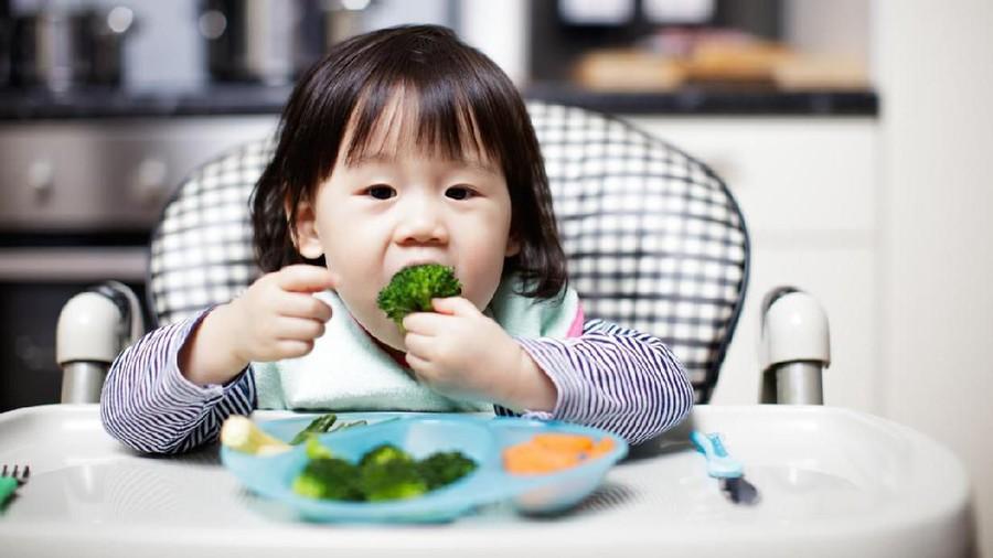 Nonton Acara Masak Bentuk Kebiasaan Makan Sehat Anak, Kok Bisa?