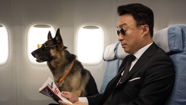 Review film Mr. Zoo: The Missing VIP menilai film itu sepertinya akan sangat dinikmati pecinta binatang atau pemelihara hewan.