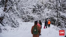 Mencari Jejak Binatang Liar di Gunung Salju Jepang
