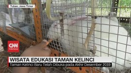 VIDEO: Wisata Edukasi Taman Kelinci