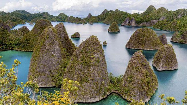 Asosiasi Pengusaha Indonesia (Apindo) mengkhawatirkan perekonomian Papua kian tertinggal karena pandemi virus corona.