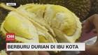 VIDEO: Berburu Buah Durian di Jakarta
