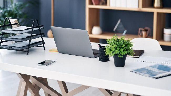 Kehadiran tanaman hias di meja kerja dapat mengurangi stres yang dirasakan pekerja secara signifikan.