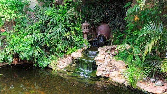 Tips Taman Rumah Minimalis Dengan Gemericik Air Yang Menenangkan Jiwa