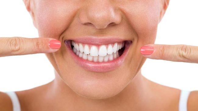 Clover Dental Care