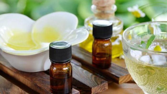 Jerawat Cepat Hilang Dengan Tea Tree Oil! Ini Fakta dan Produk Rekomendasinya!