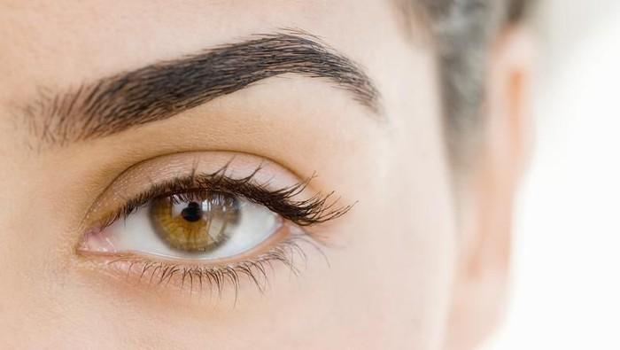 Gunakan Tools Ini untuk Eyeline yang Sempurna