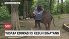 VIDEO: Wisata Edukasi di Kebun Binatang