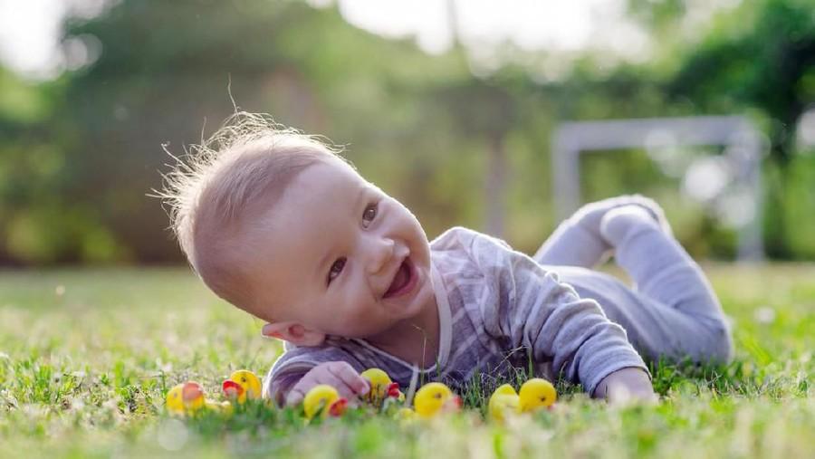 50 Inspirasi Nama Bayi Laki-laki Bermakna Pohon