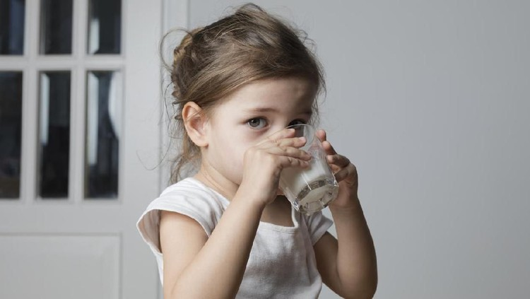 Caucasian toddler girl is drinking milk in living room.