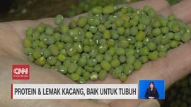 VIDEO: Manfaat Protein dan Lemak Kacang untuk Tubuh