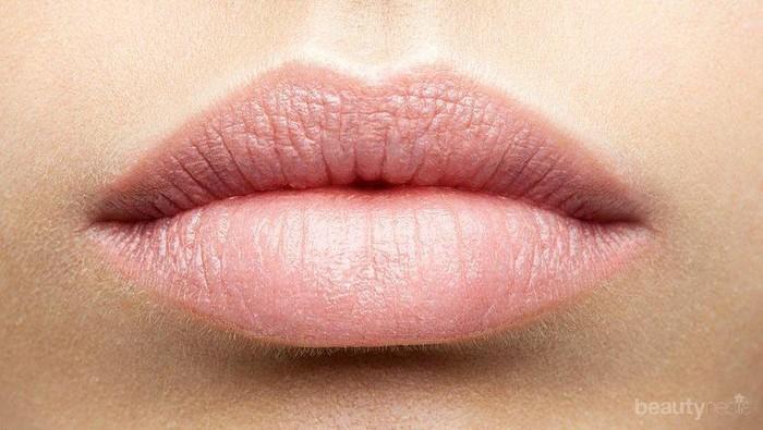 [FORUM] Lip cream apa sih yang bagus buat bibir kering?
