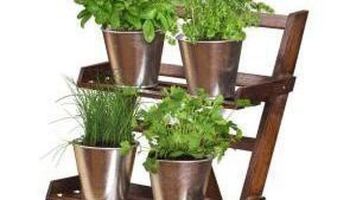 Grow Kit, Solusi Hobi Berkebun Bagi Pemula