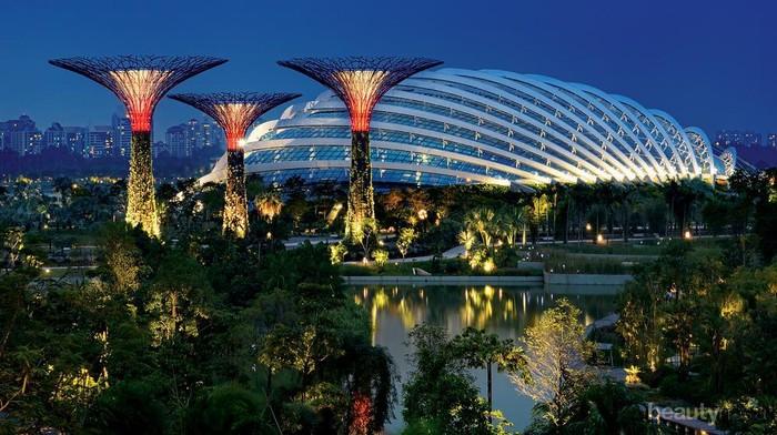 Mampir ke Gardens By The Bay di Singapura