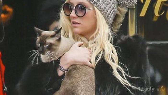 16 Selebriti Hollywood dengan Kucing Mereka (Part 1)