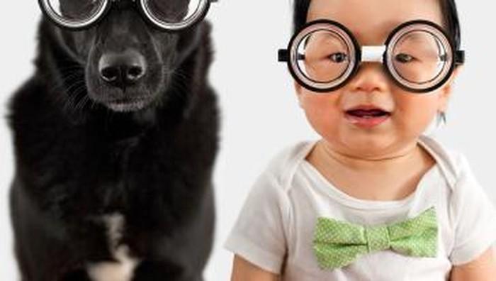 Anjing Zoey dan Bayi Jasper! Mereka Kembar! (Part 2)