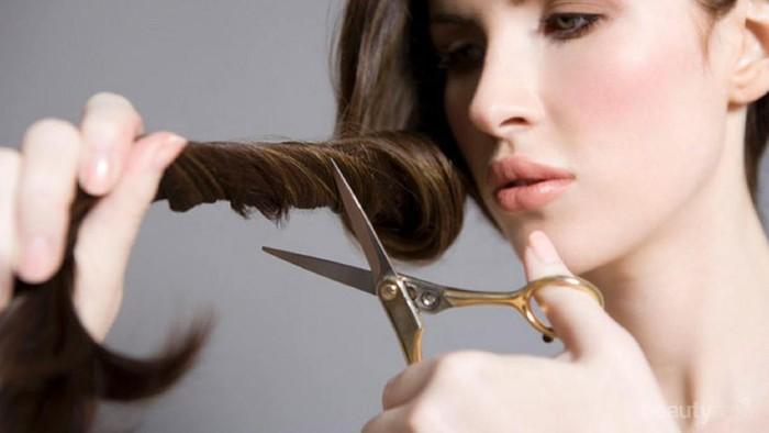 [FORUM] Kalau sering potong rambut bagian ujung cabang, bisa bikin cepat panjang?