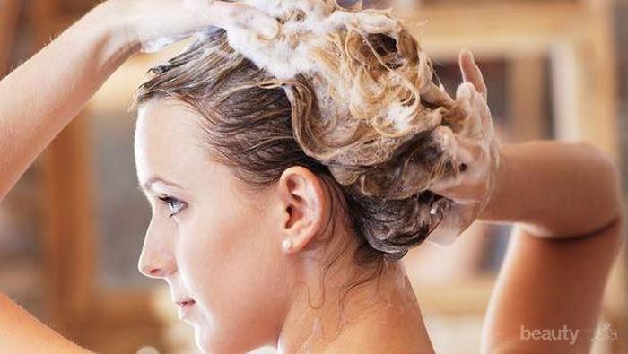 Merk Shampoo yang Bagus untuk Rambut Rontok Apa Ya?