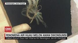 VIDEO: Fenomena Air Hijau Melon Aman Dikonsumsi