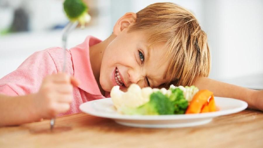 Mudah, Begini Cara Mengatasi Anak Picky Eater