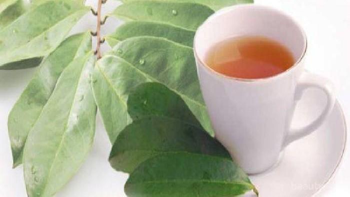 Forum Sharing Manfaat Air Rebusan Daun Salam Untuk Diet