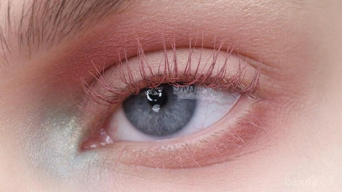 #FORUM Nude eyelashes? Try or not?