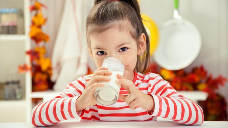Caucasian toddler girl is drinking milk in studio.