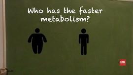 VIDEO: Orang Bertubuh Besar Punya Metabolisme Lebih Cepat