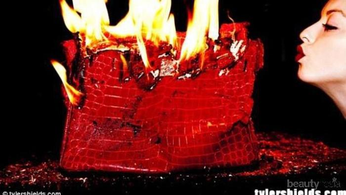 [FORUM] Viral, akun online shop di Surabaya membakar tas senilai 50jt!