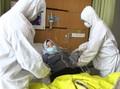 Kasus Positif Virus Corona Jabar Capai 540, Meninggal 52