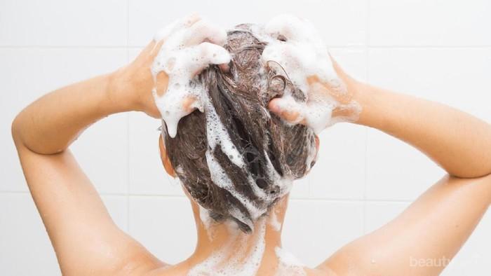 Anti Lepek! 5 Rekomendasi Shampo untuk Perawatan Rambut Berminyak