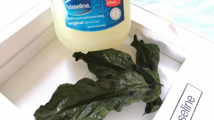 Selain Melembapkan, Ternyata Ini Manfaat Lain dari Vaseline Petroleum Jelly untuk Kecantikan