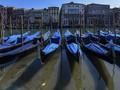 FOTO: Italia Lockdown, Perairan Venesia Kembali Jernih