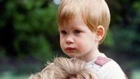 Suami Meghan Markle ini memiliki nama lengkap Henry Charles Albert David. Ia kini bergelar Duke of Sussex. (Foto: Instagram)