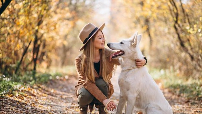 Memelihara Anjing dapat Membuat Panjang Umur? Ternyata Ini Alasannya!