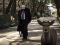 FOTO: Rusa Nara Berjalan Bebas di Tengah Pandemi Corona
