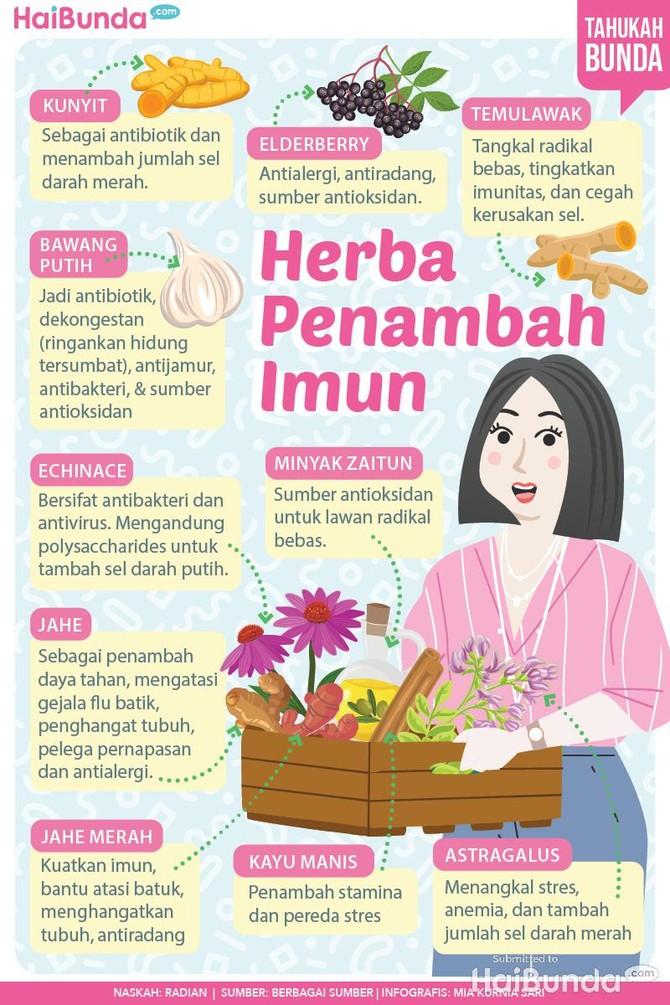 10 Herba Penambah Imun