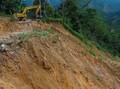 Satu Sekolah, 8 Rumah Tertimbun Longsor di Tembagapura Papua
