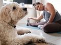 5 Pose Yoga Sederhana dalam 5 Menit untuk Tingkatkan Energi
