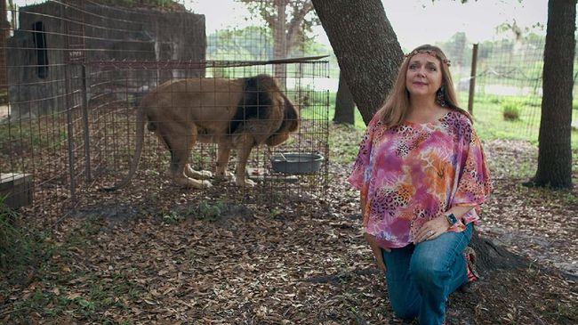 Bintang dokumenter Tiger King, Carole Baskin, melontarkan protes atas adegan yang menampilkan harimau dalam video kolaborasi Cardi B dan Megan Thee Stallion.