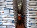 Hadapi Krisis Pangan, RI Buka Peluang Impor Beras