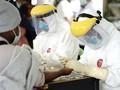 Kasus Virus Corona di Indonesia Hampir Lewati China