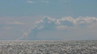 Gunung Anak Krakatau Erupsi Lagi, Tak Terdengar Dentuman