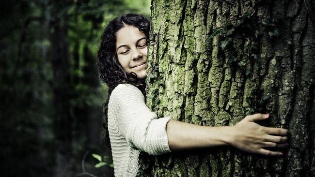 ilustrasi peluk pohon