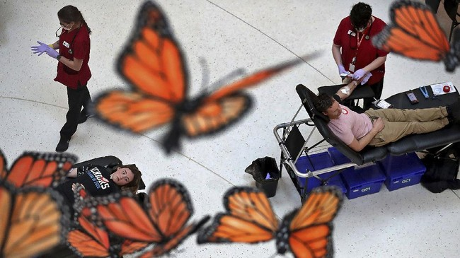 Caroline Oberle, 18, left, a senior at Eastview High School, donates his blood for the first time in Bloomington, Minn., Tuesday, April 7, 2020. The Mall of America hosted a blood drive for the Red Cross in the North Atrium of the MOA where blood was gathered while social distancing was practiced. Suspended above those giving blood were butterflies from a work entitled