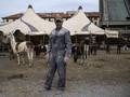 Italia Lockdown, Hewan Sirkus Terdampar di Tempat Parkir