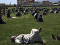Afghanistan di Antara Konflik dan Virus Corona