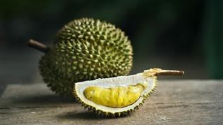 Sumut Ekspor 441 Ton Durian ke China dan Malaysia