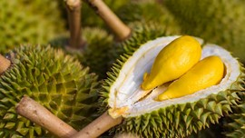 Puluhan Orang di Jerman Dirawat karena 'Mabuk Durian'